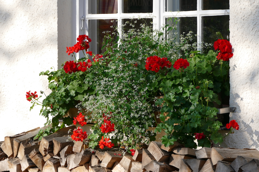 Trudering - Franziskanergarten (1)